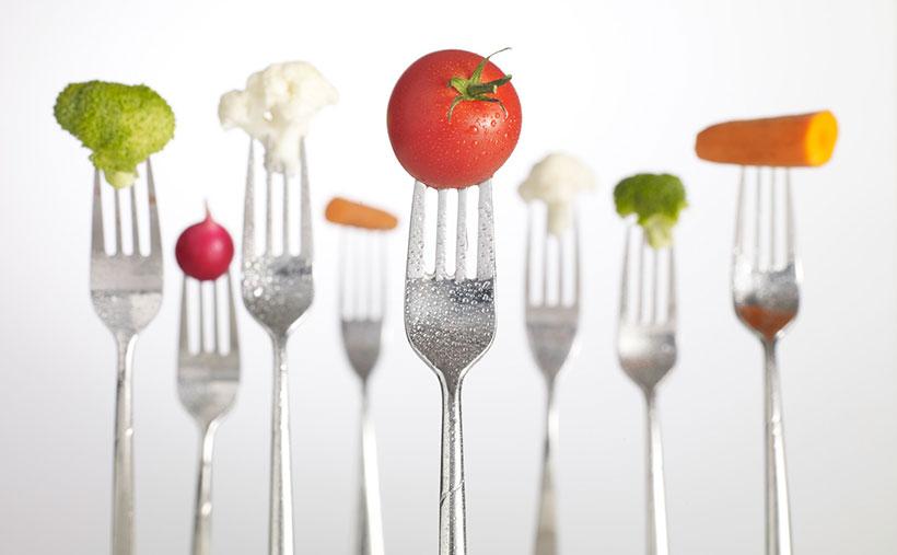 Rencana_Diet